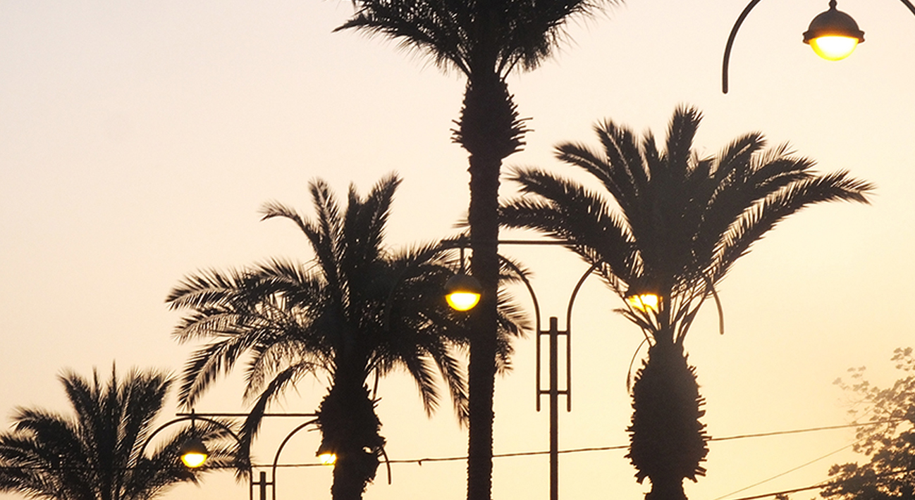 ניו יורק – רמת השרון – אוקינאווה – לוס אנג'לס: שיחה עם בועז לביא