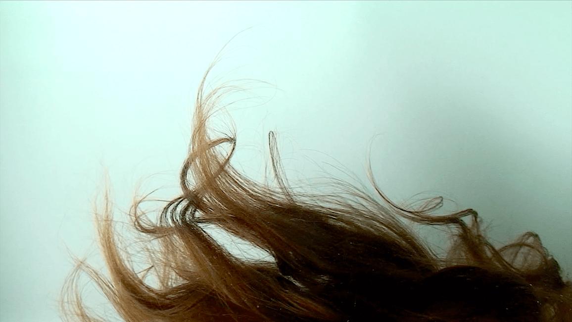 דימוי סטילס 1 מתוך ׳הראש של מדוזה באקווריום׳