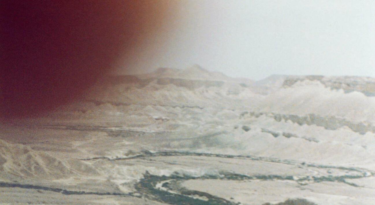 ירושלים-כפר עציון-חמאם אל-מליח-אמסטרדם: שיחה עם דעאל רודריגז גארסיה
